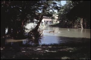 Primary view of object titled '[Max Starcke Park Dam Flooding 2]'.