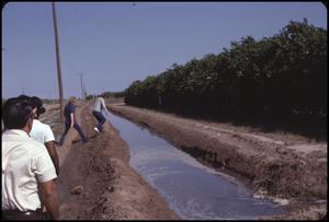 Primary view of object titled '[Irrigation Ditch Near Mission, Texas]'.
