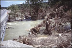 Primary view of object titled '[Guadalupe River Flood Debris]'.