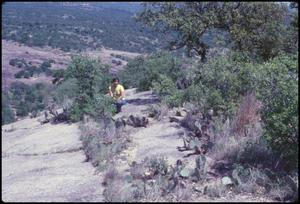 Primary view of object titled '[TLU Student on Enchanted Rock]'.