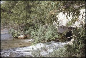 Primary view of object titled '[Guadalupe River Springs]'.