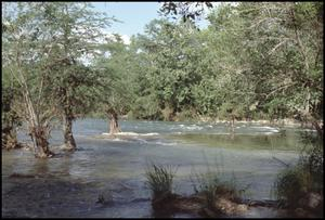 Primary view of object titled '[Huaco Springs at Guadalupe River]'.