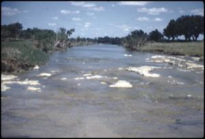 Primary view of object titled '[Pedernales River]'.