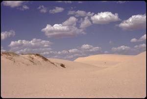 Primary view of object titled '[Sand Dunes at Monahans Sandhills State Park]'.