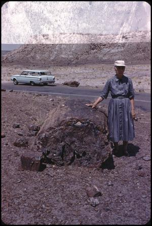 [Posing in Petrified Forest]