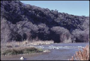 Primary view of object titled '[Guadalupe River Along River Road]'.