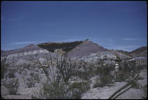 Primary view of object titled '[Painted Desert]'.