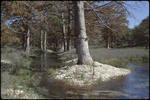Primary view of object titled '[Guadalupe River Low Water Channel at North Fork 3]'.