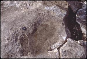 Primary view of object titled '[Human Footprint in Limestone 1]'.