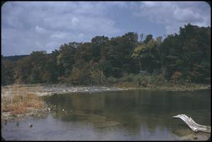 Primary view of object titled '[Guadalupe River Near Sattler, Texas]'.