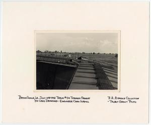 Primary view of object titled '[T&P Train Cars Wrecked in Bayou Goula, Louisiana]'.
