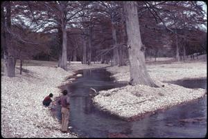Primary view of object titled '[Guadalupe River Low Water Channel at North Fork 2]'.