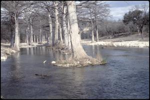 Primary view of object titled '[Guadalupe River Low Water Channel at North Fork 8]'.