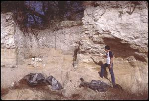 Primary view of object titled '[Mastodon Dig Site Near Seguin, Texas]'.
