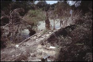 Primary view of object titled '[Flood Debris Along Guadalupe River]'.