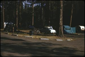 [Campground in Yosemite National Park]