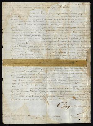 Primary view of [Decree Concerning Lands from Diego de Lasaga]