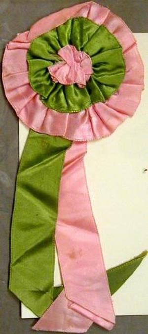 Primary view of object titled '[Pink and green silk ribbon]'.