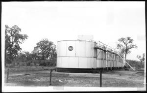 Primary view of object titled '[Row of oil storage tanks in a pasture on the George Ranch]'.