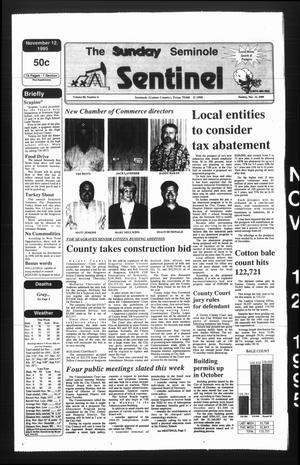 Primary view of object titled 'The Seminole Sentinel (Seminole, Tex.), Vol. 89, No. 6, Ed. 1 Sunday, November 12, 1995'.