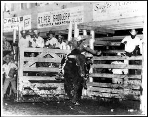Primary view of object titled '[Rodeo Cowboy Participating in the Bull Riding Event]'.