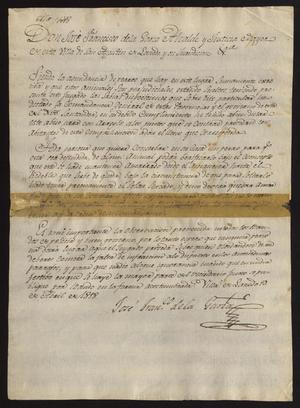 Primary view of object titled '[Ordinance from José Francisco de la Garza]'.