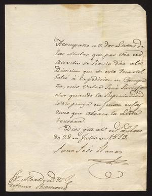 Primary view of object titled '[Message from Juan José Llanos to Ildefonso Ramón, July 28, 1819]'.