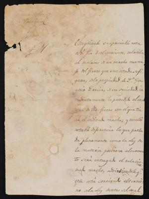 Primary view of object titled '[Letter from Manuel Francisco Vedia to the Laredo Justice of the Peace, December 17, 1841]'.