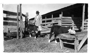 Primary view of object titled 'Lucas Brite and Cattle, c. 1930'.