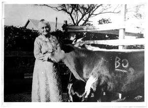 Primary view of object titled 'Carolina Palomo Borunda and her Cow'.