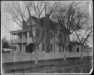 Primary view of object titled '[Trees in front of the J.H.P. Davis house]'.