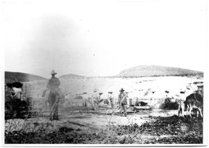 Primary view of object titled '[Photograph of Men Making Sotol]'.