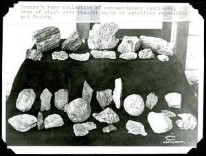 Primary view of object titled 'Frank Duncan's Rock Collection'.