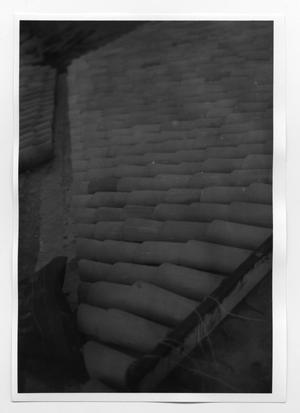 Primary view of object titled '[Clay Roof Tiles on an Old House]'.
