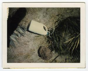 Primary view of object titled '[Jug on Ground]'.