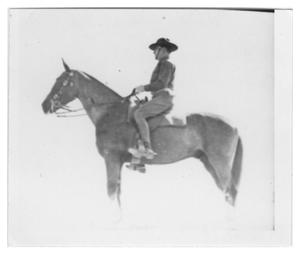 Primary view of object titled 'Cavalry Sergeant at a Horse Show'.