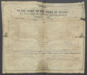 Primary view of object titled '[Land patent issued to Michael Reed by the State of Texas]'.