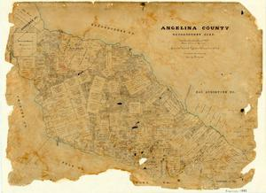 Primary view of object titled 'Angelina County'.