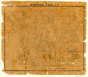 Primary view of object titled 'Bosque County'.