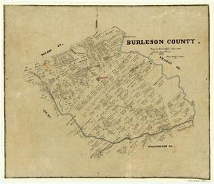 Primary view of object titled 'Burleson County'.