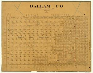 Primary view of object titled 'Dallam County'.