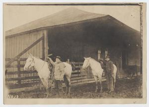 Primary view of object titled '[Two Men Standing by Horses]'.