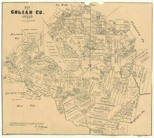 Primary view of object titled 'Goliad County'.