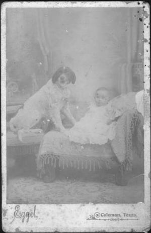 Primary view of object titled '[Alfred Kirkland Baker as an infant, with a dog]'.