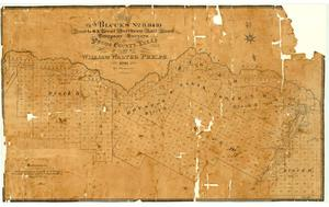Primary view of object titled 'Map of Blocks Number 8, 9, and 10 Houston and Great Northern Railroad Company Surveys in Pecos County, Texas owned by William Walter Phelps'.