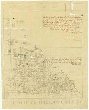 Primary view of object titled 'A Map of Dallas County'.