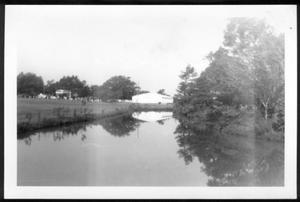 Primary view of object titled '[Photograph of Dry Creek at George Ranch]'.