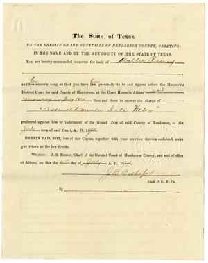 Primary view of object titled 'Document pertaining to the case of The State of Texas vs. Mollie Rainey, cause no. 731, 1874'.