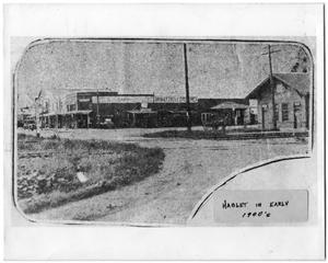 Primary view of object titled '[Haslet street and businesses]'.