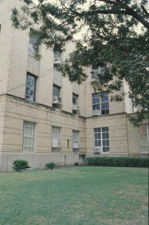 Primary view of object titled '[Dallas High School]'.